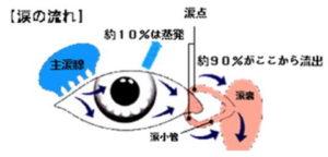 おが・おおぐし眼科【鼻涙管閉塞症、涙嚢炎